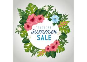 带叶子和花框的热带夏季特卖会_6196647