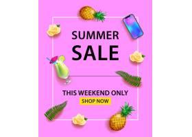 夏季促销横幅智能手机鸡尾酒菠萝玫_2541753