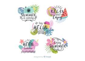 五颜六色的夏季徽章系列_4528980