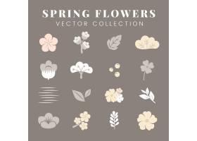 五颜六色的花卉套装_3852090
