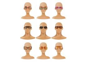 人体模型头部展示太阳镜逼真套装_4342613