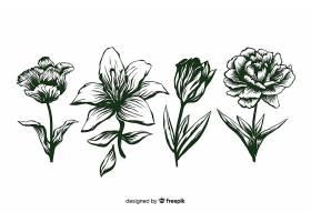 逼真的手绘花卉茎和叶都是绿色的_5445500