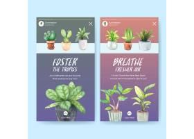 用于社交媒体的带有夏季植物和室内植物的In_9066916