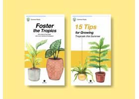 用于社交媒体的带有夏季植物和室内植物的In_9066927