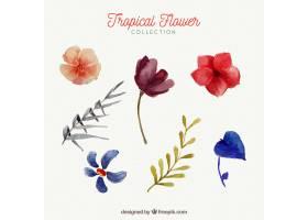 水彩画风格的热带花卉收藏_2241690