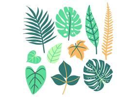 抽象的热带树叶概念_8374897