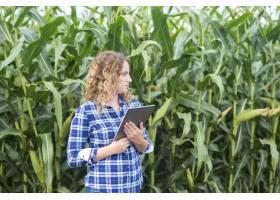 一位农民站在玉米地里拿着平板电脑一边_11133994
