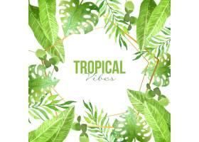 金色框架的热带树叶_8008880