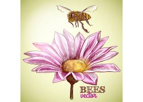 飞舞的蜜蜂和盛开的花朵背景_4560829