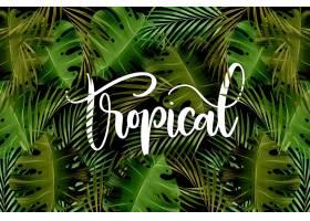 绿叶的热带文字图案_8247967