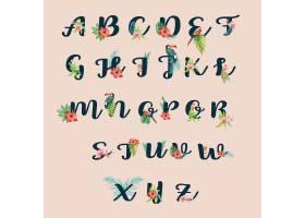热带字母手写印刷术夏季植物叶概念_4950965