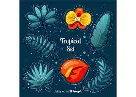 热带树叶和花朵_4343541