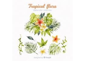 热带树叶和花朵_4351605