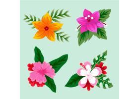 热带花叶收藏_8050732