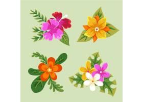 热带花叶收藏_8050754