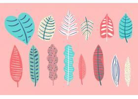 抽象的热带树叶概念_7973350
