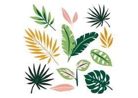 抽象的热带树叶概念_7973351
