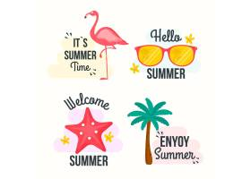 平面设计的夏季徽章_8248228