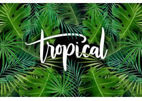 异国树叶的热带文字图案_8247964