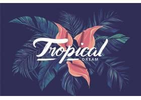 带树叶的热带字母_7971091