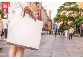 金融袋旅游购物袋商务消费_1251812