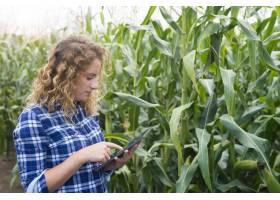 拿着平板电脑站在玉米地里上网发报告的女农_11133999