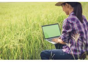 带着笔记本电脑的稻田里的农民_3738146