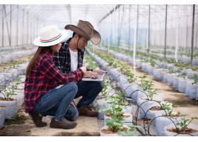 农业研究人员拿着平板慢慢察看植物_4550458