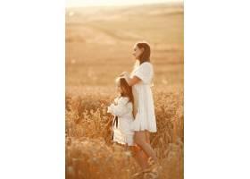 麦田里的一家人穿着白色连衣裙的女人戴_10164581