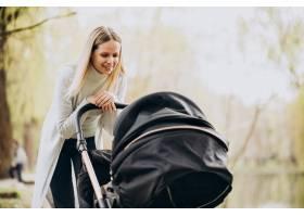年轻的母亲推着婴儿车在公园里散步_8380414