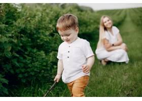 母亲带着儿子在夏日的田野里玩耍_5252258