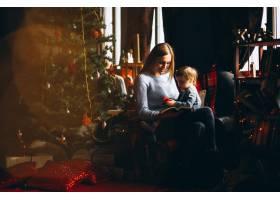 母亲和女儿在圣诞树旁_3655486