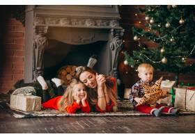 在圣诞树旁带着孩子的母亲_3654269