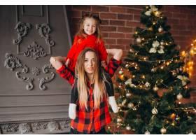 母亲带着女儿装饰圣诞树_3654258