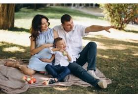 丈夫带着怀孕的妻子和儿子在公园野餐_3199803