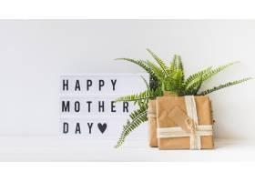 母亲节概念带植物和礼盒_2027996