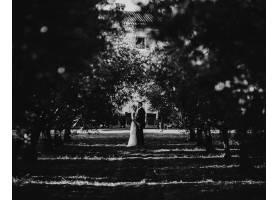 拥抱的新人站在公园果树之间的小路上_2914146