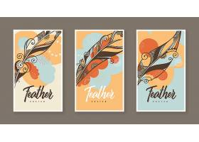 三张带有矢量羽毛装饰插图的海报_12680840