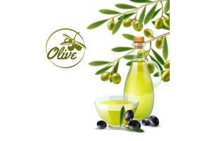 青橄榄枝条橄榄油浇注器装饰性背景海报_3817852