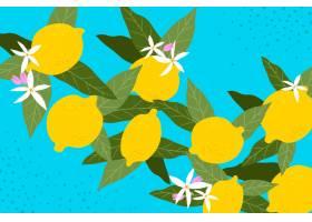 柠檬和鲜花天衣无缝_13088182