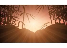 日落天空衬托着竹子_2533748