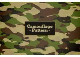 军队和军队的伪装图案背景_8152343