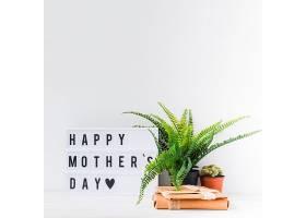 母亲节与植物的概念_2027997