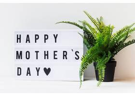 母亲节与植物的概念_2027999