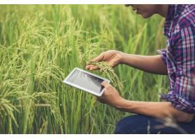 站立在与片剂的一个米领域的农夫_3738144