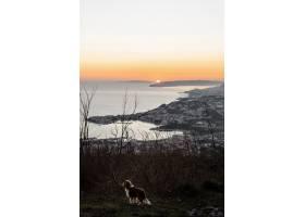 美好的海邊風景與日出_13727944