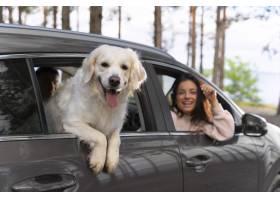 关闭有狗的人在汽车_15365698