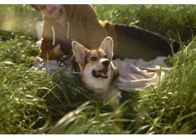 关闭有狗的人在自然_15987554