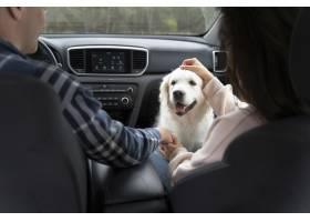 关闭有逗人喜爱的狗的人在汽车_15365682