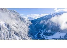 樹的美好的空中射擊在一個多雪的冬天蓋了阿_14376664